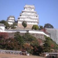 姫路城へ行ってきました。