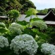 箱根 阿弥陀寺へ