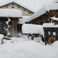 416.73歳、滋賀県高島市安曇川で、とんでもない大雪に巡り合った