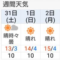 箱根駅伝_区間エントリー