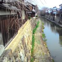 アズキさん k i k i さん  八幡掘から三井寺です。