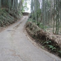 水戸の坂(5)