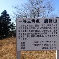2017-01-06 鹿野山の富の山 (幻の桜 地球を救うブログさんより)