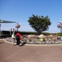 2017・4・26 おばさんぽ 第33回全国都市緑化よこはまフェア まちなかフラワースポット・山手西洋館。それにしてもお天気でこんなにも違う柴田さん家が人気の港の見える丘公園会場(^^;。