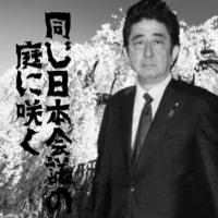 ソメイヨシノ韓国起源説と日本会議