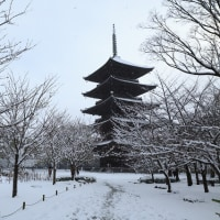 雪の京都(2017/1/15)