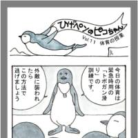 ひげペンギンのピコちゃんVol.11