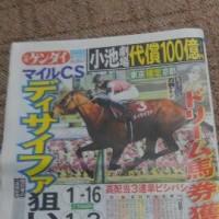 【競馬予想】マイルチャンピオンシップ