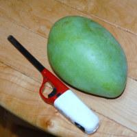 140緑のマンゴー