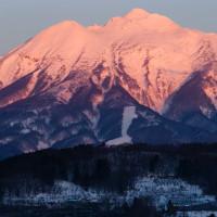 冬は朝の「紅岩木」が美しい