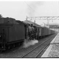 SLの写真 ⑦ D51164
