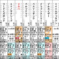 【マカハ】3/5阪神 武庫川ステークス・特別登録