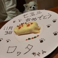 犬の七五三