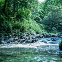 道の駅霧の森【愛媛県四国中央市】