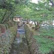 63 鷹峯源光庵バス停から沢山を経て4池巡り 2017.07.19
