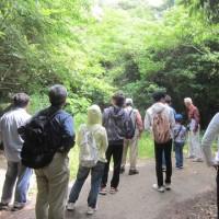生物多様性保全ゾーン見学会