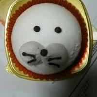 アザラシケーキ