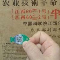 養殖業者らはその事業慣行を浄化しようとしている  中国 (3)