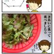 絵日記:サマー・サニー・レタス!