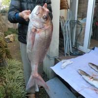 2015年釣り納めの釣行