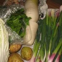 野菜生活の始まり