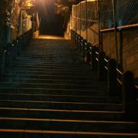 早朝階段トレ