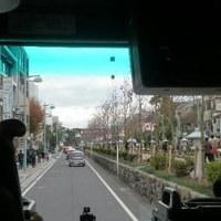 忙しかった横浜と鎌倉。