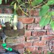 自動灌水機
