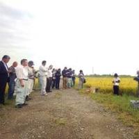 「平成28年度水稲直播栽培第2回現地検討会」が開催されました。