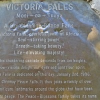THE TOWN OF VICTORIA FALLS