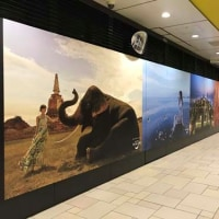 6月19日(月)のつぶやき:乃木坂46 Amazing Thailand タイ国政府観光庁(表参道駅ビルボード広告)