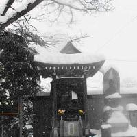 デジブック 『積雪(スーパーまで)』