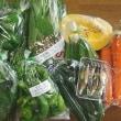 お野菜たちは・・・ 色々