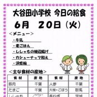 今日(6/20火)の給食