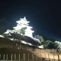 夜の掛川城