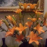 シャンソン歌手リリ・レイLILI LEY  二月のシャンソンの友達 の花々