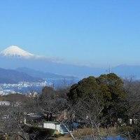 囲碁と日本平からの富士山2017