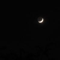 月と金星 。。。