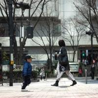 3月30日(木)  新宿へ(2) 都心のハト
