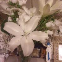 シャンソン歌手リリ・レイLILI LEY  大舞台の翌日と翌々日