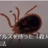 殺人「ダニ」が、激増し北上中!!