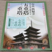 久々の興福寺