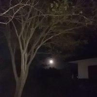 東の空に満月・・・・・雨模様の月曜日・・・