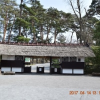 好天に誘われ当てもなく須賀川牡丹園を散策
