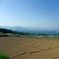 車坂峠ヒルクライム