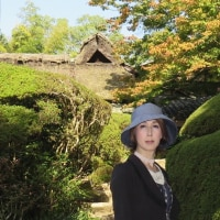 10月末、初秋の詩仙堂にお邪魔しました。で、、