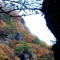 霊山紅葉狩りで驚きの出会い