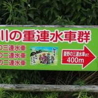 朝倉市三連水車見学。