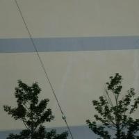 開校したばかりなのに雨漏りするわ、クラックだらけだわの高木北小学校。これ、今後の経過をしっかり見ていかねばなりませんな。。。