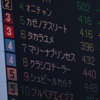 小倉競馬  2017/2/26(日)